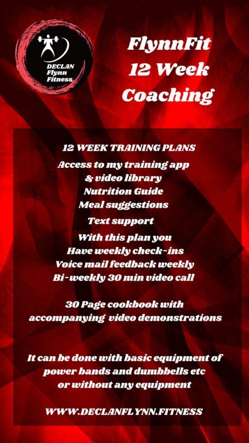 online trainers ireland 12 week plan