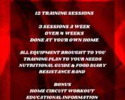 pt 12 week online trainers ireland